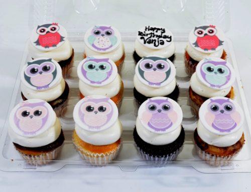 1804 – Owl Cupcakes