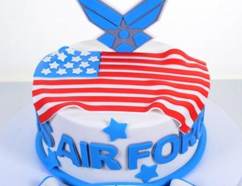 1991 – Air Force Cadet